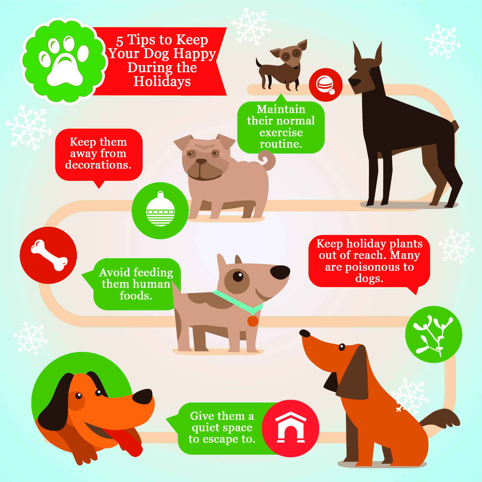 dog holiday infogram